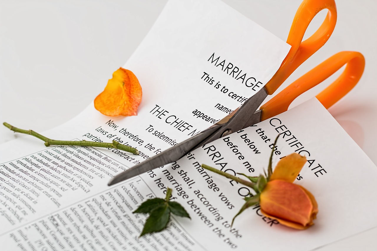 VÍCTIMAS DEL DIVORCIO  GARFIELD Y GATITA
